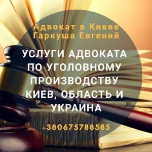 Адвокат в Киеве. Консультации адвоката. - изображение 1