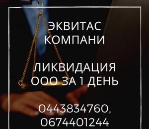 Быстрая ликвидация ООО Одесса - изображение 1