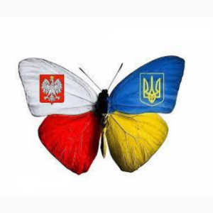 Вакансия СОРТУВАННЯ саджанців клубники в Польщi - изображение 1