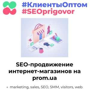 Внутренняя оптимизация и SEO продвижение интернет-магазинов на - изображение 1
