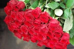 Доставка цветов Измаил - изображение 1