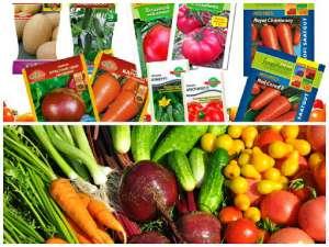 """Качественные семена. Заказать семена. Агро центр""""B&S Product"""" - изображение 1"""