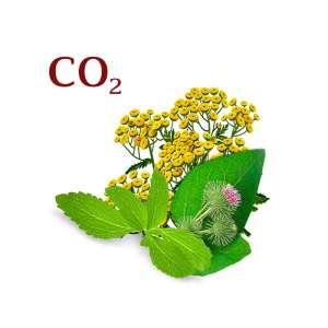 Купить Комплекс СО2 экстрактов - изображение 1