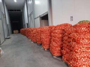 Морковь, капуста, лук, свекла оптом в Ужгороде. - изображение 1