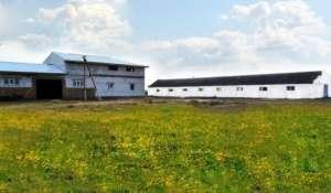 Продается комплекс агропромышленного предприятия в Житомирской области - изображение 1
