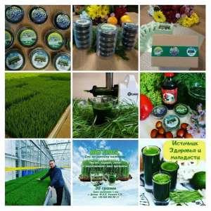 Продам Витграсс - сок из ростков пшеницы для вашего здоровья - изображение 1