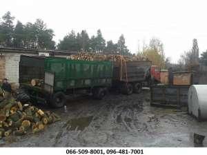 Продам дрова. Дуб сухой, метровый. - изображение 1