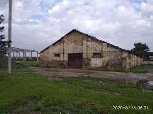 Продам склад 608 кв. м в центре поселка Одесской обл. - изображение 1