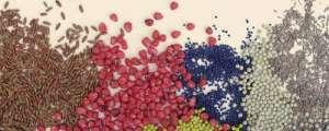 Протравители для пшеницы, ячменя - изображение 1
