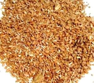 Пшеница цельная, дробленая в Харькове - изображение 1