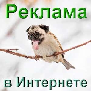 Реклама в Интернете Одесса - изображение 1