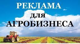Реклама для агробизнеса. АГРО объявления на агро-досках. Одесса. - изображение 1
