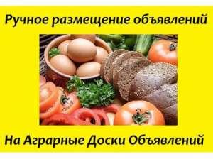 Ручное размещение агро-объявлений. Реклама для агробизнеса. Днепр - изображение 1