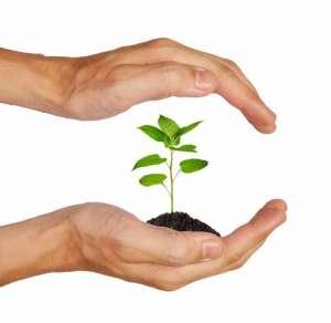 Средства защиты растений. Большой выбор.Агроцентр«B&SProduct» - изображение 1