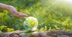 Средства защиты растений для сельского и личного хозяйства - изображение 1