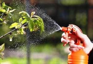 Средства защиты растений. Приобрести. Огромныйвыбор - изображение 1