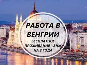 Срочный набор! Везем бесплатно c Украины по био! Работа в Венгрии! 700-950 долларов в месяц - изображение 1