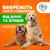 Таблетка Bravekto - вбережіть свого улюбленця від блох та кліщів.. Домашние животные - Покупка/Продажа