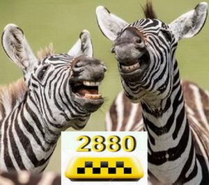 Такси Одесса недорого комфортно по 2880 - изображение 1
