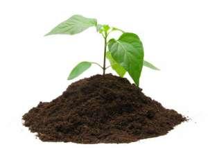 Торфяные субстратыдля растений. Низкие цены,различныефасовки - изображение 1
