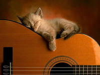 Уроки на гитаре Одесса - изображение 1