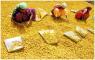 Шафран Специя Королей оригинал поставка из Индии бесплатная доставка - изображение 2