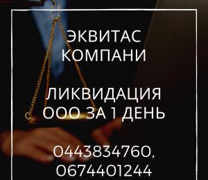 Швидка ліквідація ТОВ Одеса - изображение 1