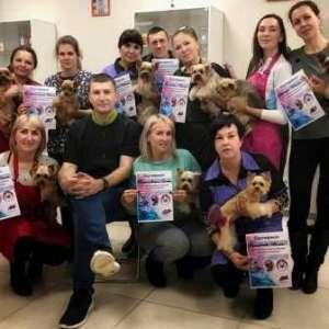 Школа груминга, обучение стрижкам животных. Одесса - изображение 1